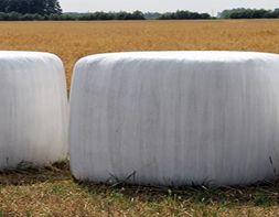 Ilustracja do informacji: możliwość odbioru odpadów rolniczych